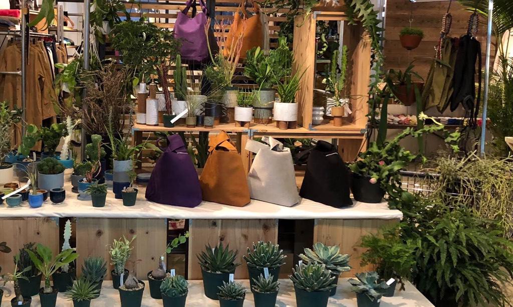 plants_IMG_9076