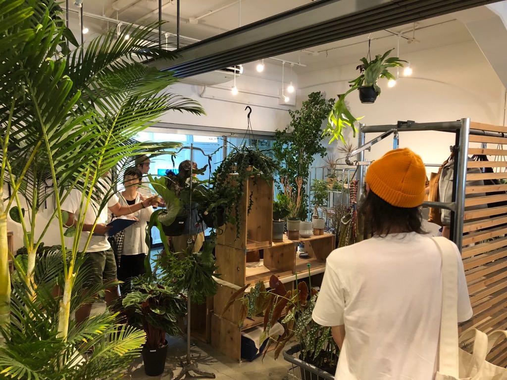 plants_IMG_9140