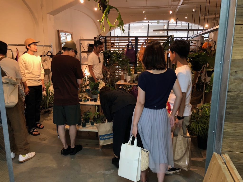plants_IMG_9141